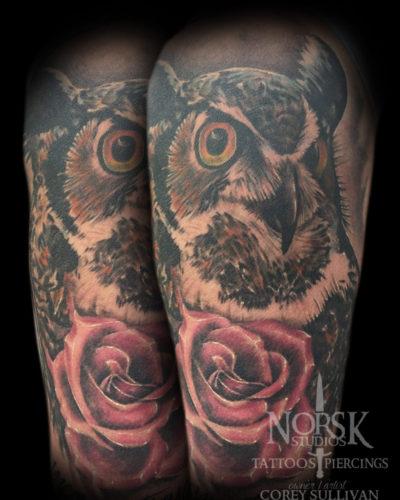 owlhealed