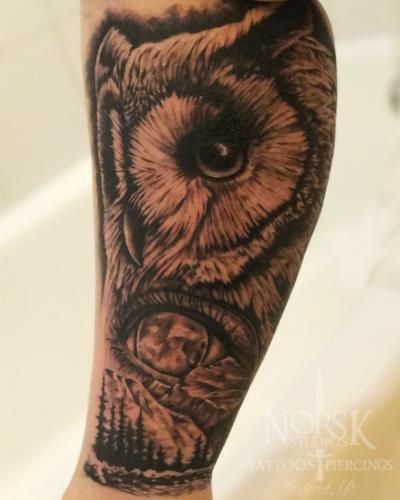 owllegg